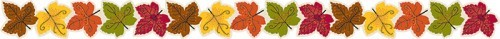 Maple-Leaves-CTP